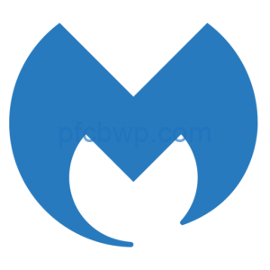 Malwarebytes Anti-Malware 2020 Crack With License Key Free Download