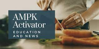 AMPK Activator 2021 Crack Mechanisms With Torrent Full Latest Software
